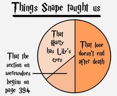 Things Snape Taught Us :)