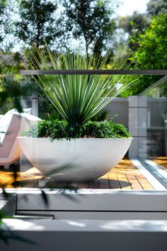 Outdoor styling. Nice pot planting.  White and green. Sydney Beachside Garden | Secret Gardens