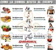 Esta guía te muestra cómo ciertas comidas afectan al cuerpo.