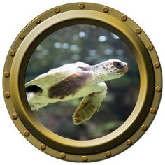 Baby Sea Turtle Porthole Vinyl Wall Decal by WilsonGraphics, $13.00