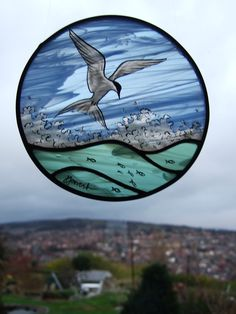 Arctic tern roundel hand painted using tratitional kiln fired techniques on stained glass. 4 layers of painting and firing in the top section! Juliet Forrest www.jjjartwork.com