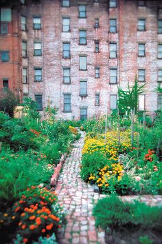 """""""A community garden created by local residents with the help and support of Green Guerillas.""""   From http://www.mkcreative.net.  Green Guerillas is a nonprofit organization that supports hundreds of community gardens (and gardeners) in New York City.  http://www.greenguerillas.org/"""