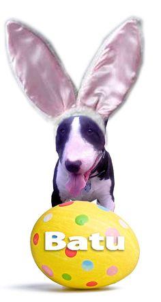 Happy Easter from Batu and Slim Man