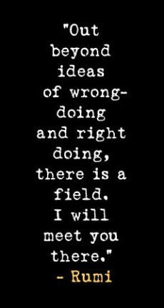 One of my most favorite Rumi Quotes! Out beyond ideas of wrong-doing and right doing, there is a field. I'll meet you there ~ Rumi The Words, Cool Words, Great Quotes, Quotes To Live By, Love Quotes, Inspiring Quote Tattoos, Inspirational Quotes, Motivational Quotes, Magical Quotes