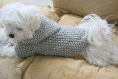 Dog Hoodie Sweater  Grey  Pet Clothing  Hand Knit Dog by BubaDog, $53.00