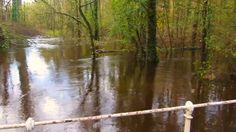 Flood at Dunmore Wood - 15/11/2014