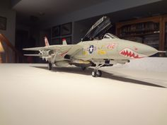 F-14 from VF-111 1/48 scale Eduard