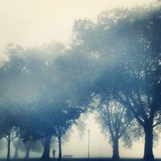 Fog rises over Highbury Fields in #London this morning 19°C I 67°F #BurberryWeather