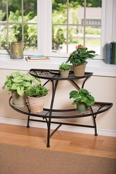 Semi-Circular Metal Plant Stand - Black Tubular Steel ♡ Perfect for my balcony! It's small & that looks like a great way to save space! ♡ Outdoor Metal Plant Stands, Modern Plant Stand, Diy Plant Stand, Hanging Plants, Indoor Plants, Potted Plants, Indoor Outdoor, Indoor Gardening, Hanging Wire