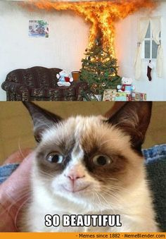 Grumpy Cat is happy.about a BURNING Christmas tree.wow, that's real mature <--- it's a Grumpy Cat meme, calm down lol! Grumpy Cat Quotes, Funny Grumpy Cat Memes, Funny Animal Jokes, Cute Funny Animals, Funny Animal Pictures, Animal Memes, Funny Cats, Grumpy Kitty, Grumpy Baby