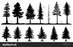 Forest Silhouette Tattoo Conifer tree silhouettes on the white background stock vector ...
