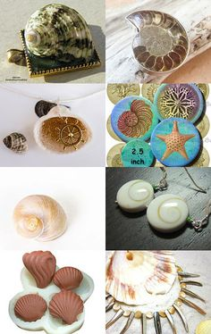 She Sells Sea Shells by Renee Stewart on Etsy--Pinned with TreasuryPin.com
