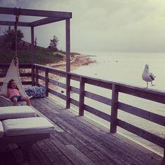 A girl and a dancing bird. #summer #gracetheanimaltamer perfectsunset