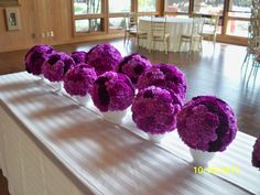 love these purples carnations!