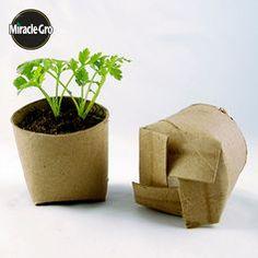 Cualquier recipiente o material es bueno para una maceta. ¡Y aun mejor si es reciclado!