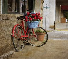 ༺✿ Flower Pedals ✿༻ ༺✿ Baskets of Flowers Riding Bicycles ✿༻ Red Bike and Flowers  by Tony  Colvin