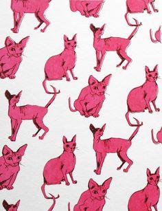Sphynx cat pattern