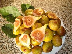 Na přelomu července v Přibicích sklízejí ze dvou keřů 50 až 60 vyzrálých fíků... Samos, Seed Pods, Peach, Fruit, Garden, Plant, Garten, Lawn And Garden, Gardens