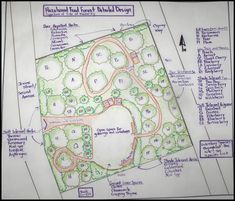 Food Forest! A Food Forest is a garden with fruit and nut trees--& the flowers, vegetables and herbs found in regular gardens. Beautiful places for people to gather. Designed to grow the way that nature intended, with the plants each serving a purpose or multiple functions for humans, animals and other plants.