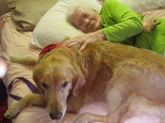 Therapy Dog From a dog's viewpoint | Zoey (this dog) shows up in The Return of Joy. Lynette Endicott Follow the link for the dog's point of view.