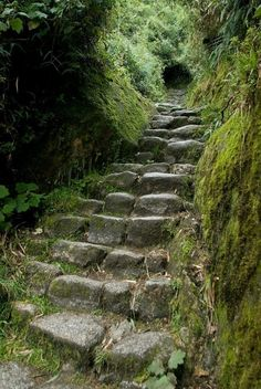 beautiful stairs outdoors