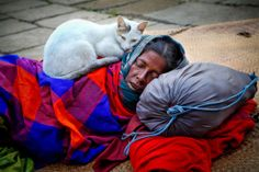 'The landscape of the Human Face' – Street Portrait Photography Workshop with GMB Akash Photography Institute, Photography Workshops, Life Photography, Street Photography, Portrait Photography, Funny Cats And Dogs, Funny Animals, Amor Animal, Animal Pics