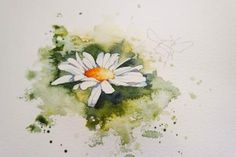 A simple daisy painting ( just in time for Mother's Day) – watercolours by rachel Daisy Flower Drawing, Simple Flower Drawing, Daisy Art, Floral Drawing, Flower Art, Watercolor Daisy Tattoo, Watercolor Artwork, Watercolor Cards, Floral Watercolor