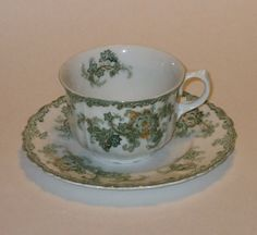 "J & G Meakin Hanley, England ""Long Branch"" Cup and Saucer Circa 1890"