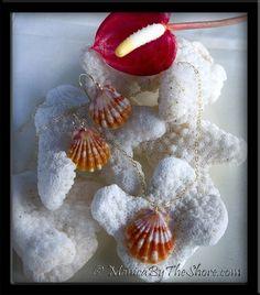 Sweet!  Sunrise Shells Necklace & Earrings 3 Piece Set in Gold