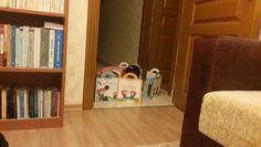Kitaplar ve oyuncaklar (Toys and Books)