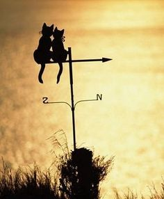 Would be cool to do a classic weather vane (with a rooster) on a barn with North and South Directions (signifies Mason-Dixon) Crazy Cat Lady, Crazy Cats, Georges Chelon, Lightning Rod, Cat Signs, Weather Vanes, Cat Art, Garden Art, Cats And Kittens