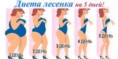 Меню диеты Лесенка на 5 дней | Полезные советы