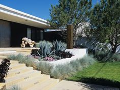 The landscape renovation for the Rolston Residence, a single family home designed by Richard Neutra in 1961, continues the lines of the house into the landscape. In the front garden, white, plaster walls separate the garden and street. Inside, the entry sequence progresses through arbor/gate, rectangle of Korean grass, succulent garden, and sculpture terrace. The contrasting plant colors and textures create interest and visual depth.