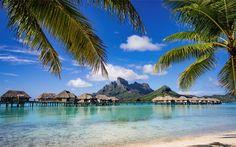 tropical island, summer, paradise, ocean, palm trees, summer vacation