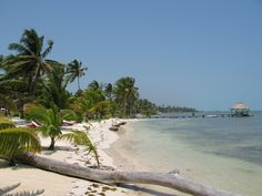 Robinson Crusoe style beach in the Cayes
