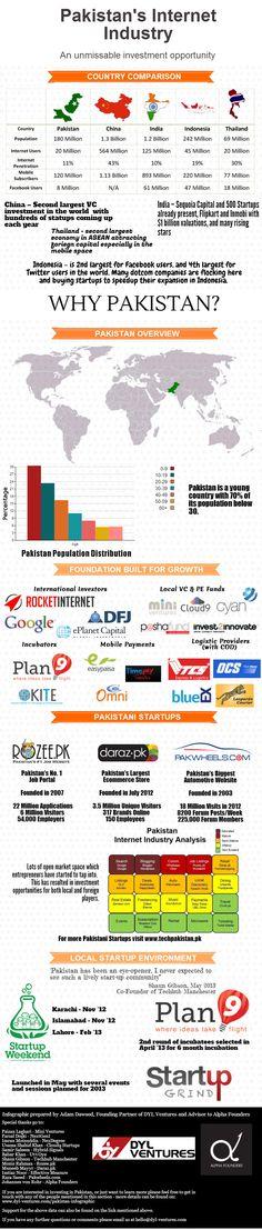 Pakistan's startup ecosystem in 2013