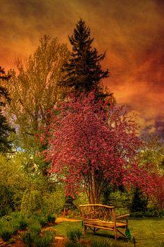 The enchanted garden Reader Rock Garden, Calgary, Alberta, Canada by JoLoLog