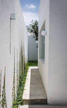 Image 9 of 42 from gallery of / ADI Arquitectura y Diseño Interior. Photograph by Oscar Hernández Side Yard Landscaping, Side Garden, House And Home Magazine, Minimalist Home, Home Interior, Exterior Design, Future House, Landscape Design, House Design