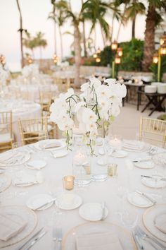 a glam tropical wedding centerpiece with white orchids is a chic idea wedding flowers 25 Lush And Bold Tropical Wedding Centerpieces Tropical Wedding Centerpieces, Orchid Centerpieces, Wedding Flower Arrangements, Wedding Decorations, Table Decorations, Centerpiece Ideas, Tropical Weddings, Centerpiece Flowers, White Orchid Centerpiece