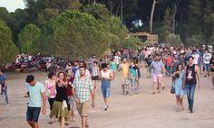 VIDA FESTIVAL 2015 EL BOSQUE