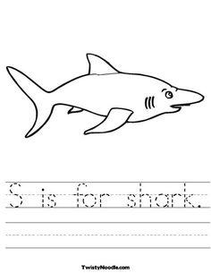 Shark Worksheet