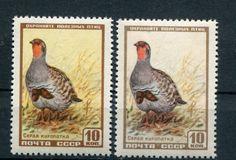 1957   разновидность цвет