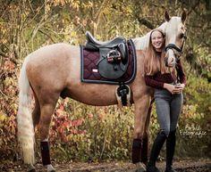 Palomino, Caballo Haflinger, Horse Fashion, Fox Hunting, Hunter Jumper, Equine Photography, Horse Breeds, Horse Tack, Dressage