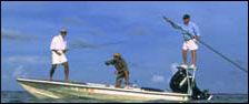 Search Key Largo fishing charters and information here at Fla-Keys.com, The Official Tourism site of The Florida Keys.