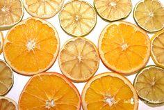 00190P-dehydrate-citrus-orange