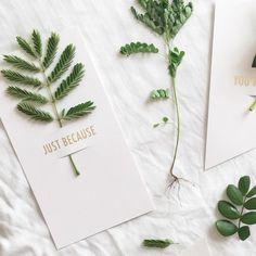 FLOWER NOTES | Tokketok