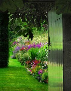 Gate to a colorful garden.flower border garden with color