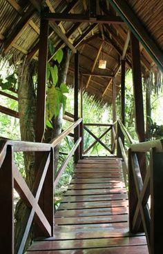 Costa Rica Tree House Hotel. Lage: Punta Uva, Limón, Costa Rica