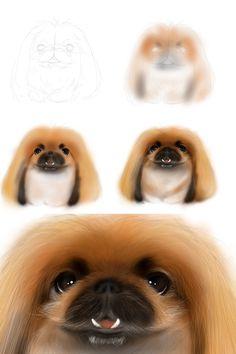 My works,Pekingese portraits.愛犬ペキニーズと、そのお友達の似顔絵・肖像画。 Pekingese portraits  by MAMIJIRO(japan) http://ameblo.jp/mamijiro0922/