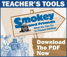 Help Smokey Bear and learn how you can prevent wildfires.